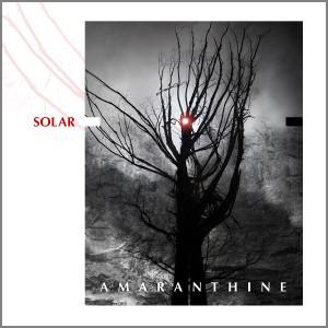 Solar_front_border_600